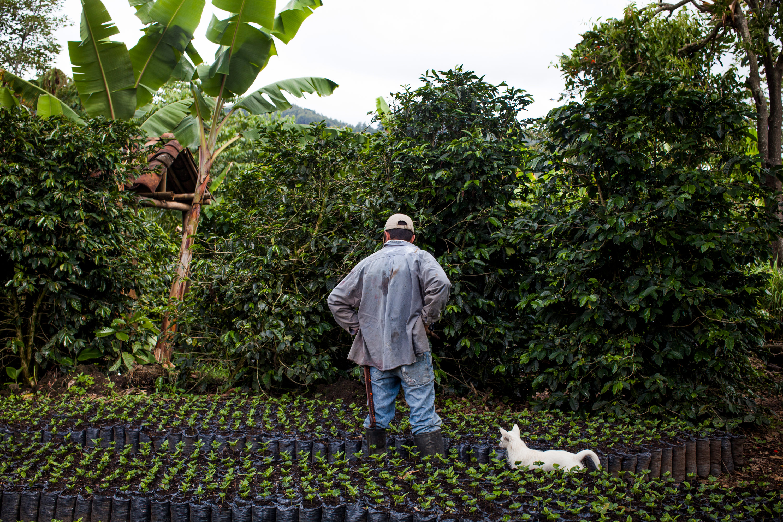 cj-affiliate-2021-latinx-heritage-month-colombian-coffee-farmer