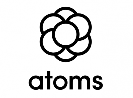 Atoms Ideal Everyday Shoes